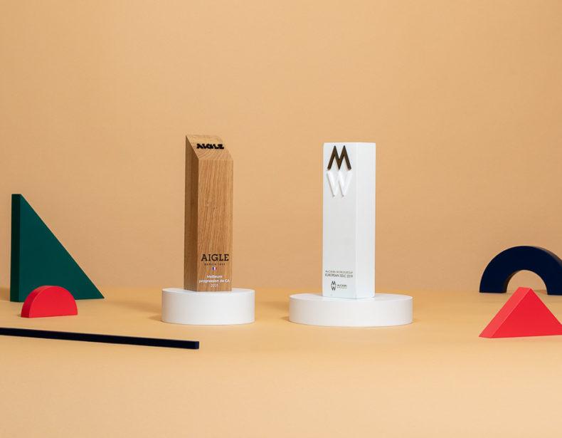B01 : Trophée en bois sur mesure
