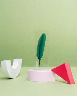 P10 : Plexiglas award with inclusion