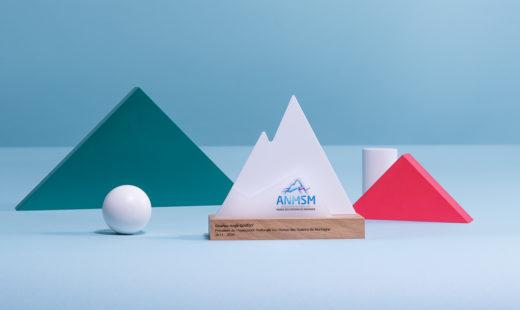 P13 : Bespoke plexiglas & wood award