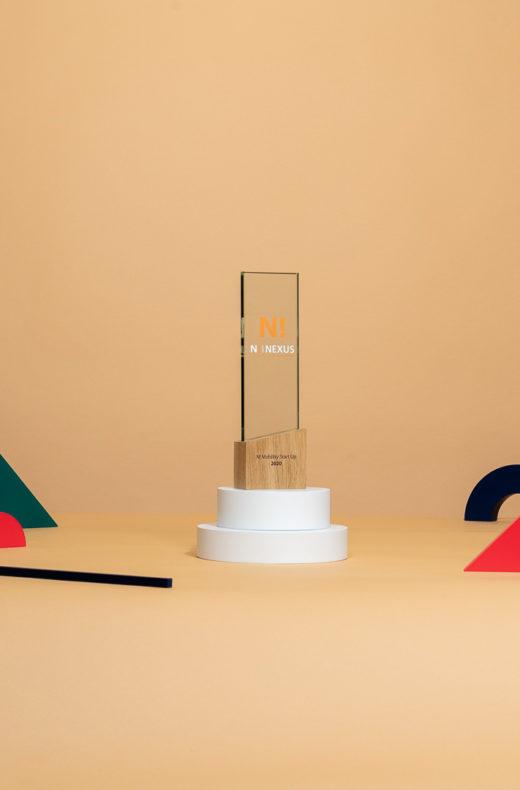 V08 : Trophée bi-matière en verre et bois